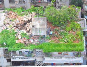 avantajele acoperisurilor plane Un acoperiș în Haikou, Hainan, China, folosit ca grădină, zonă de depozitare pentru lemne de foc, pui crescuti liber și o zonă pentru grătar